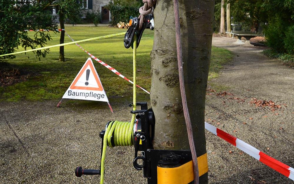 Achtung Baumpflegearbeiten