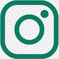 Baumpflege BaumArt auf Instagram